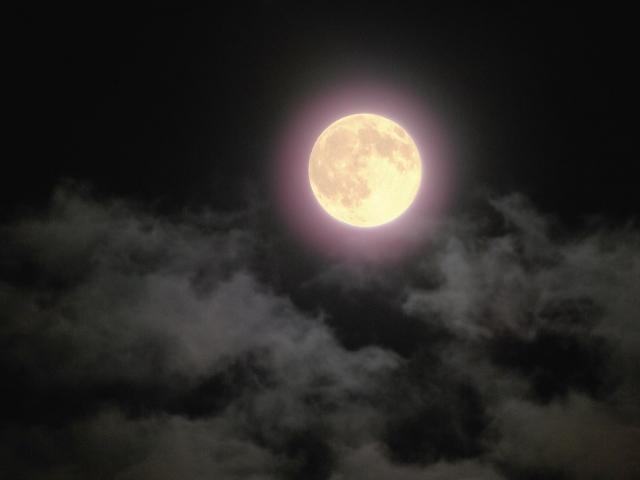 <満月の神託>