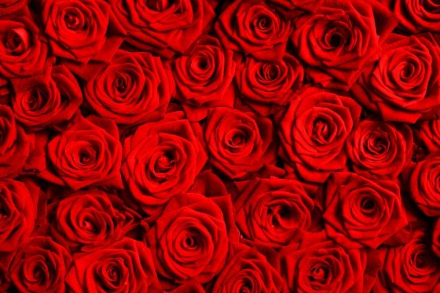 薔薇で恋愛運アップ★ローズのおまじない