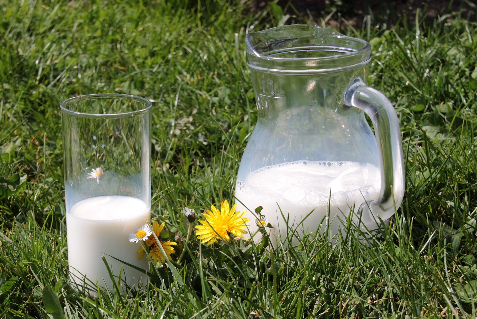 幸福感が重要!肉と乳製品が金運アップに効果的な理由