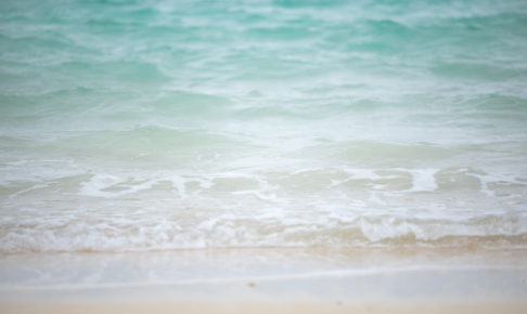 夏遊びのすすめ① 水遊び編