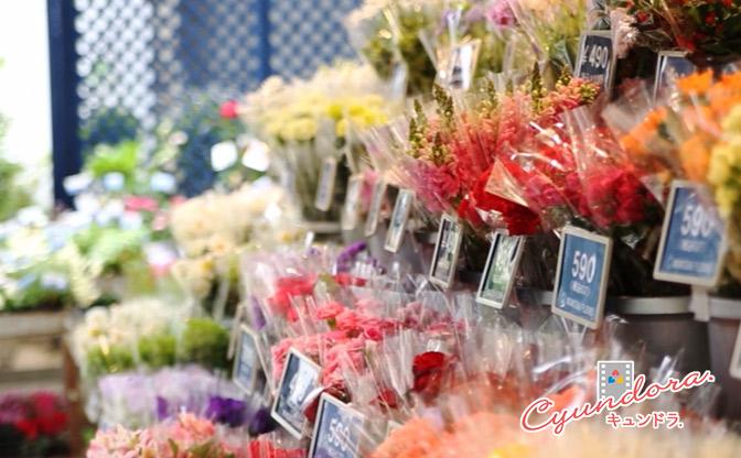 【キュンドラ】朱色セレナーデ ~お花屋さんのカレ~ #001