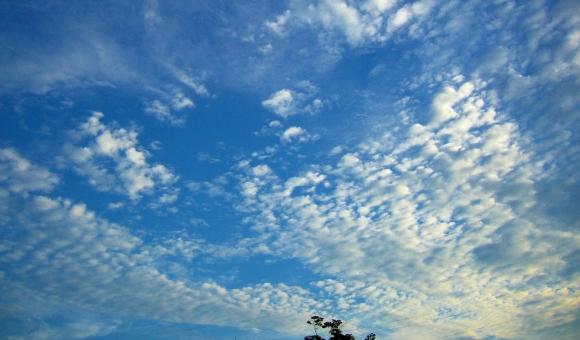 9月27日(水) <十干十二支:丁巳 中宮:四緑木星>