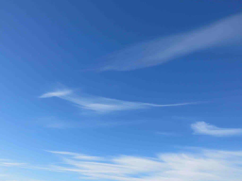 10月12日(木) <十干十二支:壬申 中宮:七赤金星>