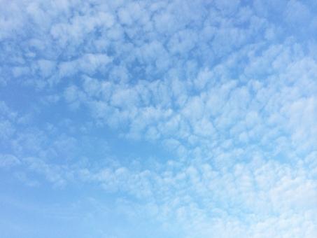 10月14日(土) <十干十二支:甲戌 中宮:五黄土星>