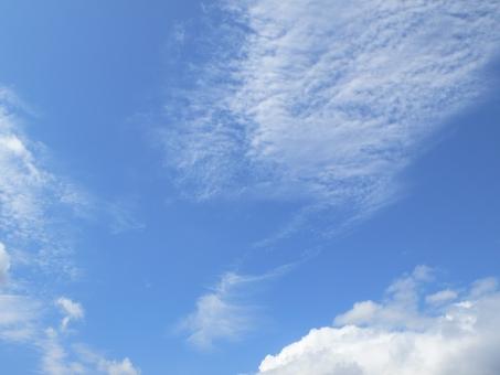 10月15日(日) <十干十二支:乙亥 中宮:四緑木星>