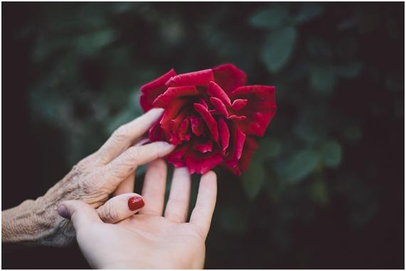 マザコン男診断②古い女性の価値観を強要する?