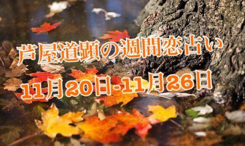 11/27-12/3分も公開済です★11月20日-11月26日の恋愛運【芦屋道顕の音魂占い】