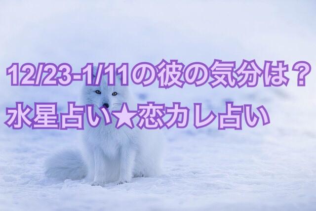 【彼の運勢】12月23日-1月11日の彼へのおすすめアプローチ【Kuの恋カレ占い】