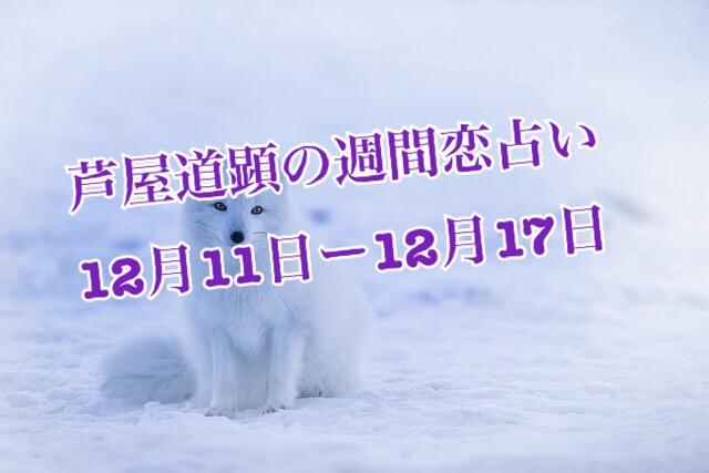 12月11日-12月17日の恋愛運【芦屋道顕の音魂占い】