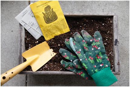 2. ガーデニング、家庭菜園