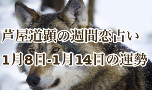 1/8-1/14の恋愛運【芦屋道顕の音魂占い】