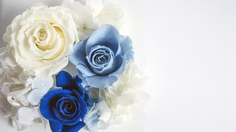 好きだけど彼氏と性格が合わない時に役立つ風水③バラの香りを取り入れる