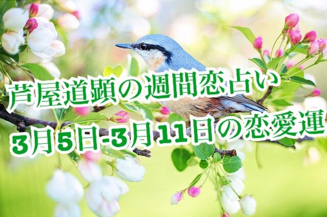 2018年3月5日-3月11日の恋愛運【芦屋道顕の音魂占い】