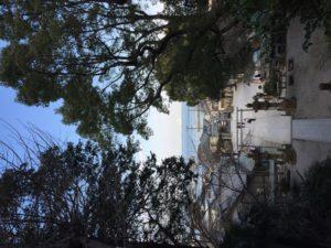 走水神社階段上