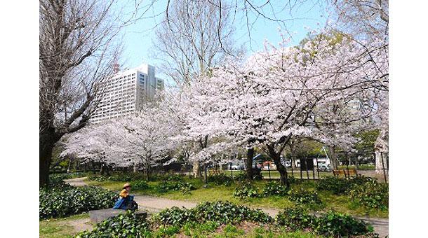 5.【有楽町】日比谷公園