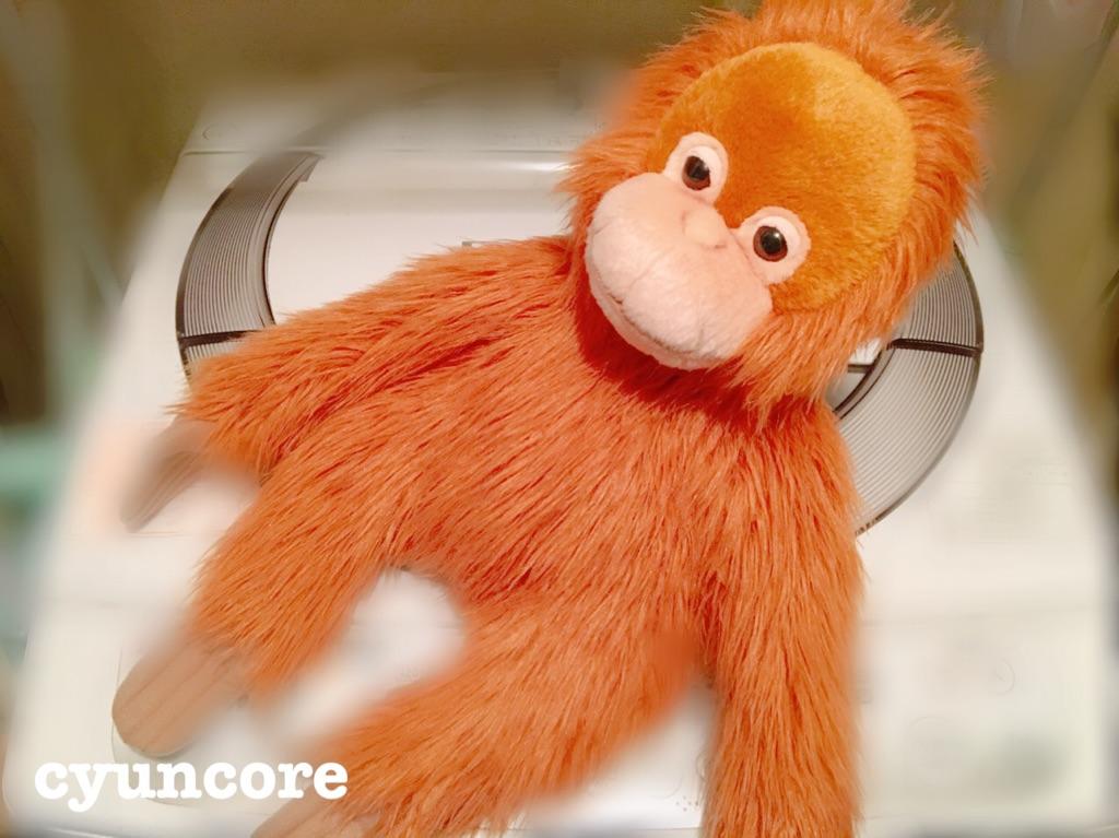 ぬいぐるみの洗濯方法・失敗しないコツ③ブラッシングをして乾かす-2
