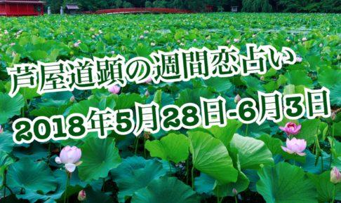 2018年5月28日-6月3日の恋愛運【芦屋道顕の音魂占い】