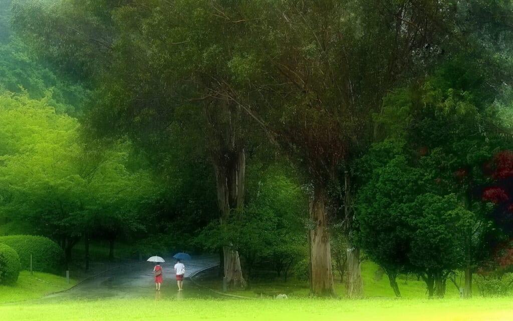 梅雨がきた!休みを無駄にしない雨の日の過ごし方8選