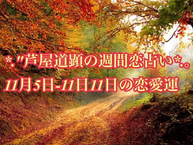 11月5日-11月11日の恋愛運【芦屋道顕の音魂占い★2018年】