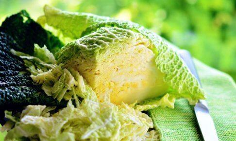 キャベツのカロリー・糖質に注目!キャベツのダイエット効果とキャベツをダイエットに活かす方法