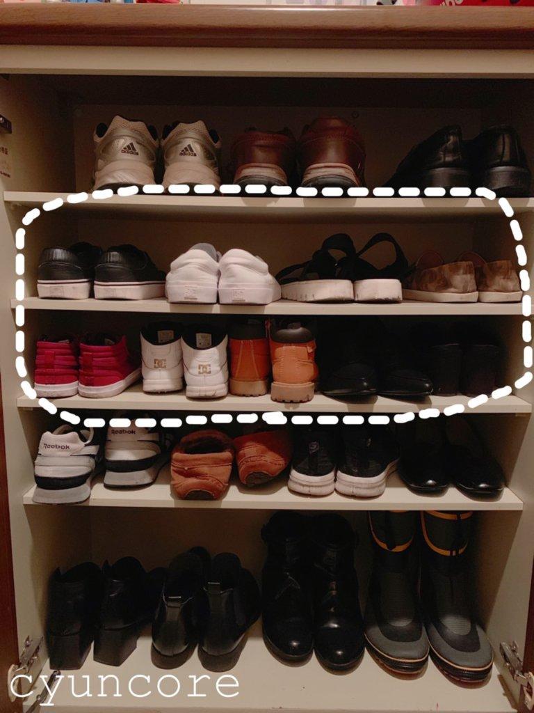 現在の靴箱の中がこちら