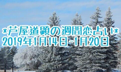 1月14日-1月20日の恋愛運【芦屋道顕の音魂占い★2019年】