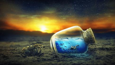 【星座×アロマテラピー】蟹座の心と体におすすめのアロマテラピー