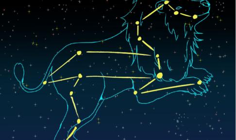 【星座×アロマテラピー】獅子座の心と体におすすめのアロマテラピー