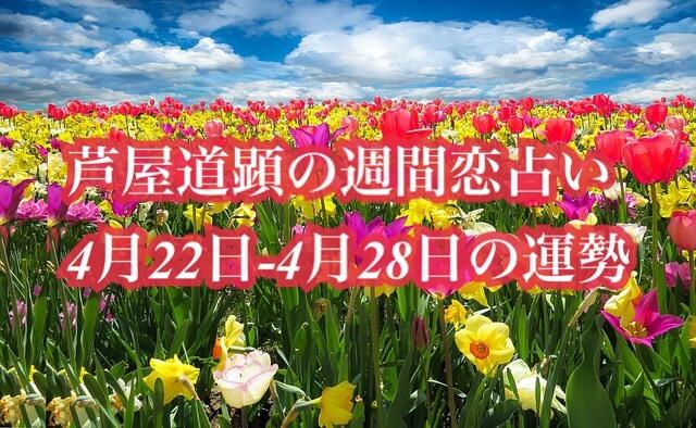 4月22日-4月28日の恋愛運【芦屋道顕の音魂占い★2019年】