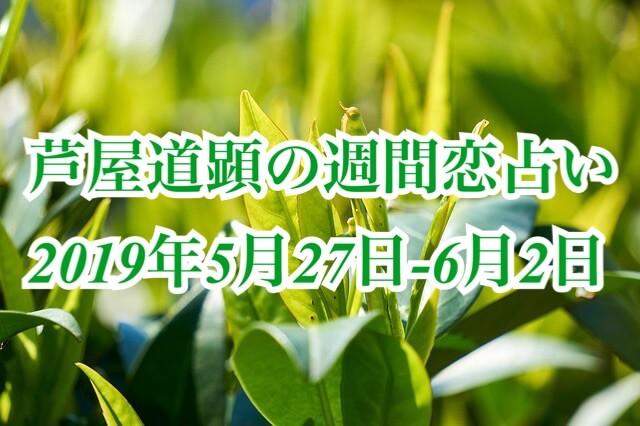 5月27日-6月2日の恋愛運【芦屋道顕の音魂占い★2019年】