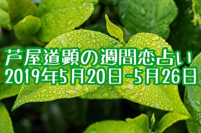5月20日-5月26日の恋愛運【芦屋道顕の音魂占い★2019年】