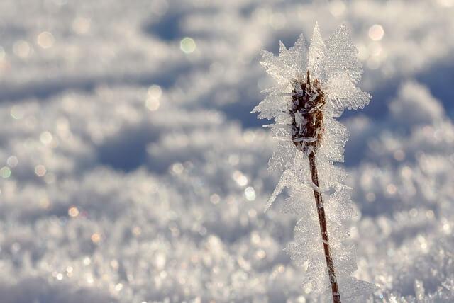 雪の結晶が出てくる夢!夢占いでの意味は?