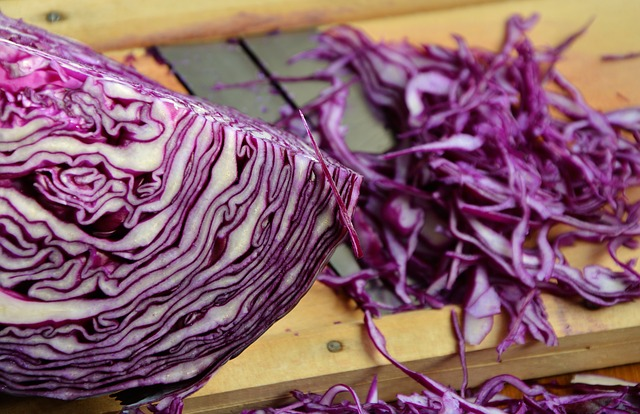 紫キャベツの栄養価