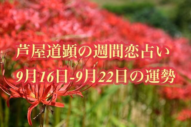 9月16日-9月22日の恋愛運【芦屋道顕の音魂占い★2019年】