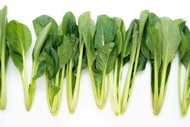 小松菜ってどんな野菜?主な栄養と効果