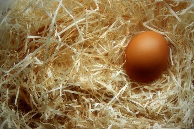 卵の栄養とは?1個あたりに含まれる栄養素