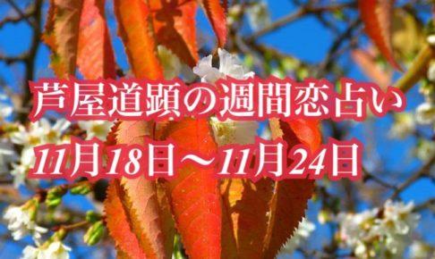 11月18日-11月24日の恋愛運【芦屋道顕の音魂占い★2019年】