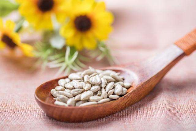 ひまわりの種には栄養があるの?含まれる栄養素と効能について