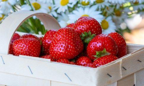 いちごの糖質やカロリーは?糖質制限中もOK?果物の糖質量ランキングもご紹介