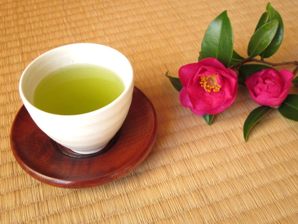 緑茶に含まれる栄養成分の効果・効能