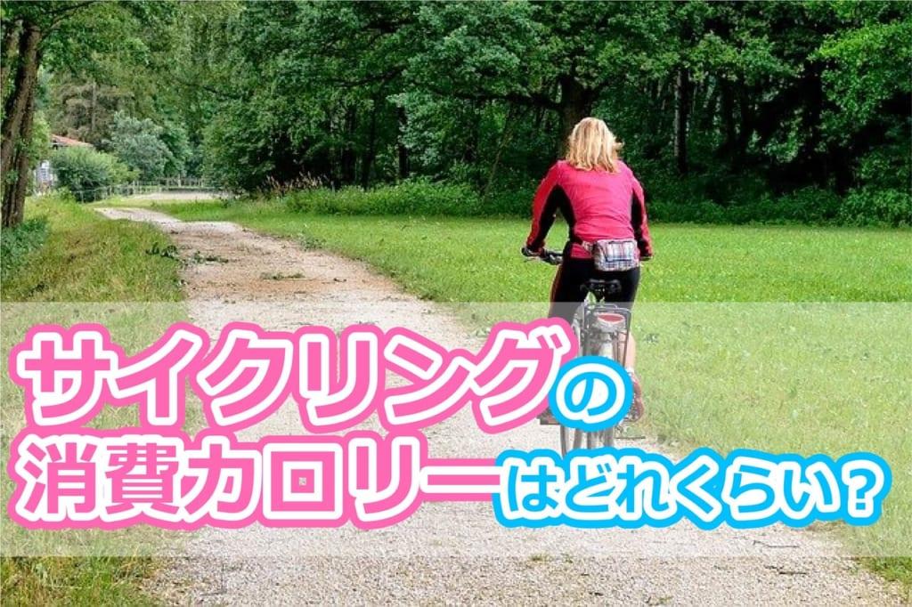 サイクリングで消費できるカロリーはどれくらい?