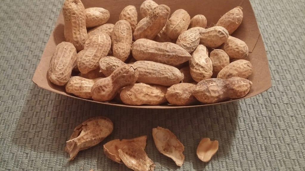 ピーナッツは糖質制限中のおやつに最適?!