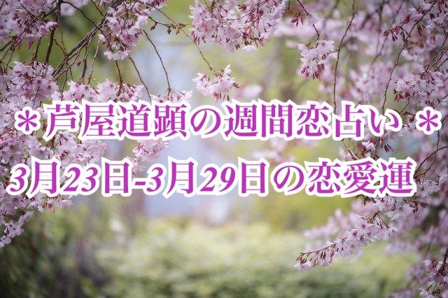 3月23日-3月29日の恋愛運【芦屋道顕の音魂占い★2020年】