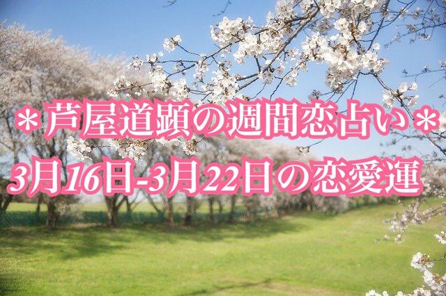 春分☆3月16日-3月22日の恋愛運【芦屋道顕の音魂占い★2020年】