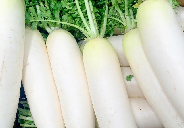 栄養ないとは言わせない!大根の素晴らしい栄養成分