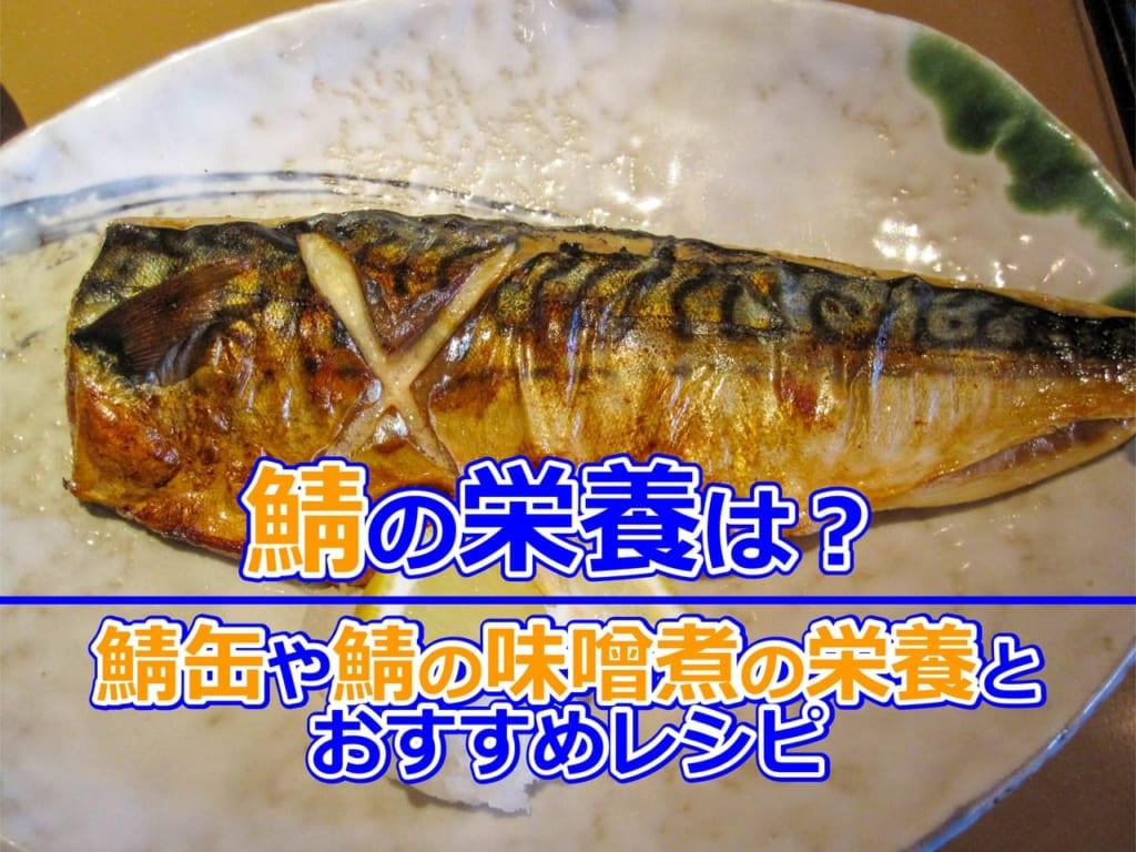 鯖の栄養は?鯖缶や鯖の味噌煮の栄養とおすすめレシピ