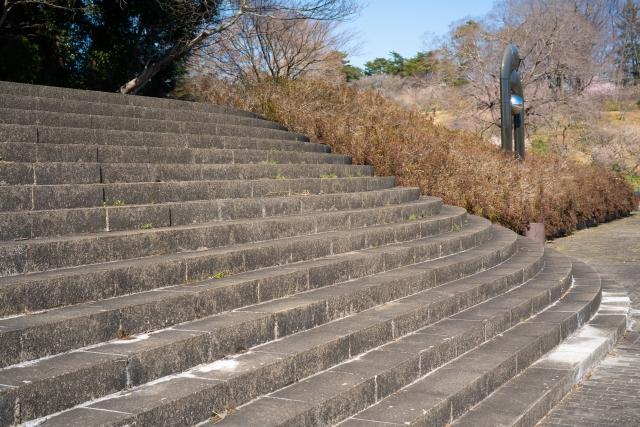 階段ダイエットの効果はカロリーだけじゃない!