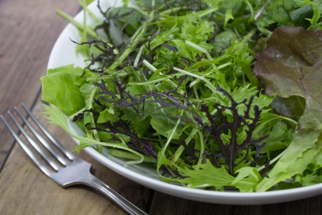 水菜の栄養効果を活かそう!【生の場合】
