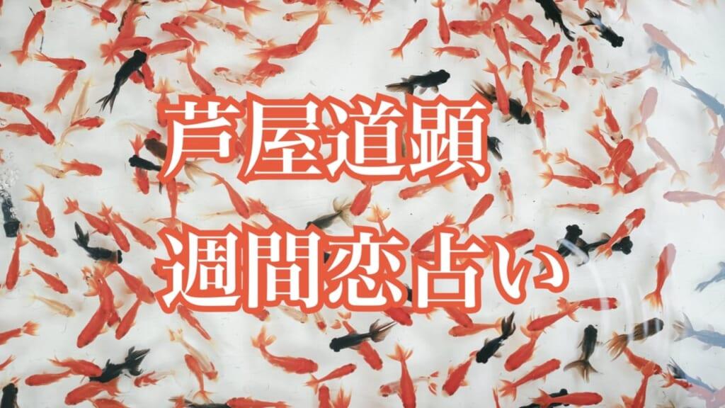 7月6日-7月12日の恋愛運【芦屋道顕の音魂占い★2020年】