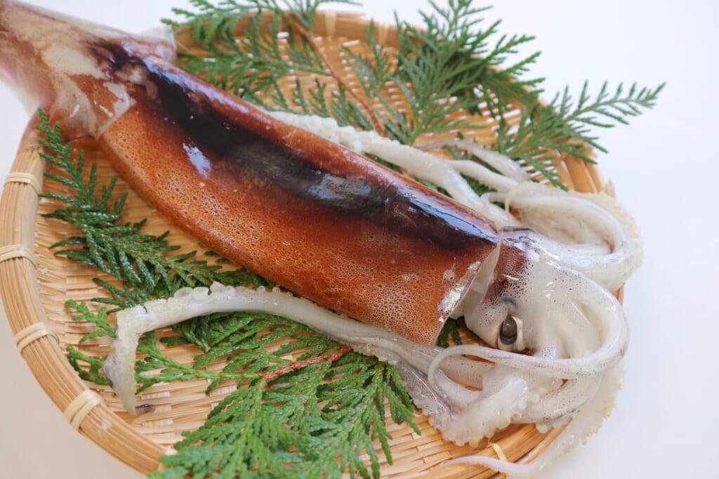 意外と知らないイカの栄養とは?イカを食べるメリットや効果まとめ